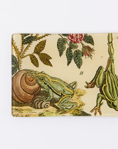 Two Frogs Tiny Rectangular Tray