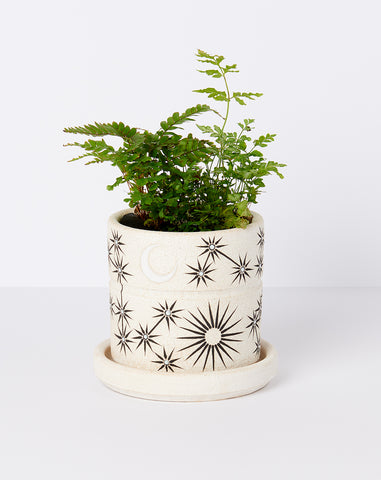 Small Planter in Sun Moon Stars
