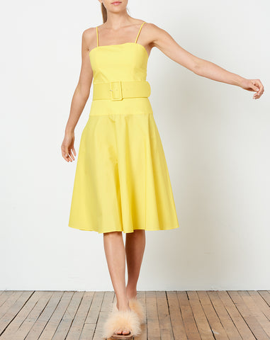 Carter Belted Dress in Yellow