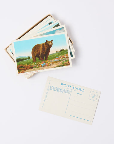 Colored Post Cards of Yellowstone National Park