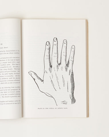 The Complete Palmist
