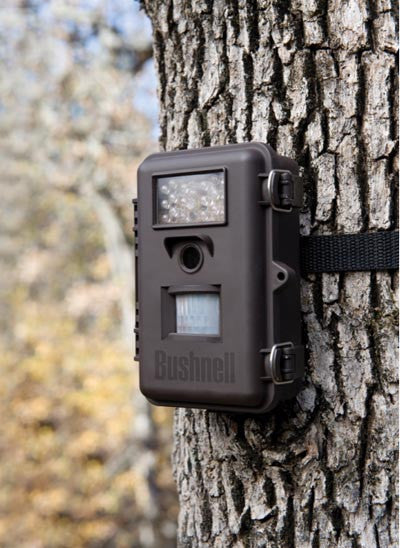 Bushnell Trophy Camera