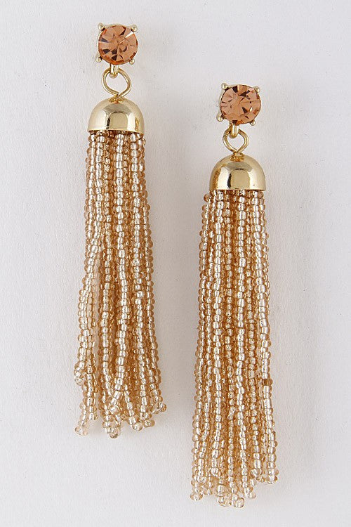 Fun Addition Tassel Earrings