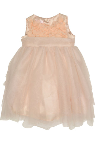 Biscotti Baby Girl's Toddler All Aflutter Dress - Blush 126AAB