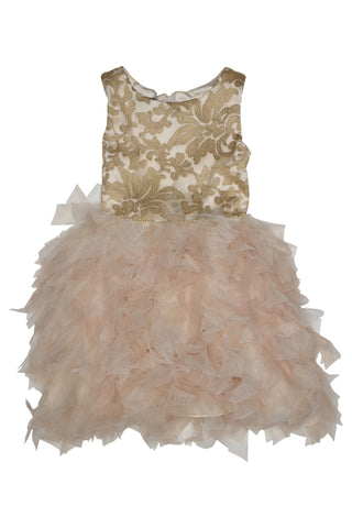 Biscotti 207RTD Girl's Royal Treatment Lace & Netting Dress - Gold