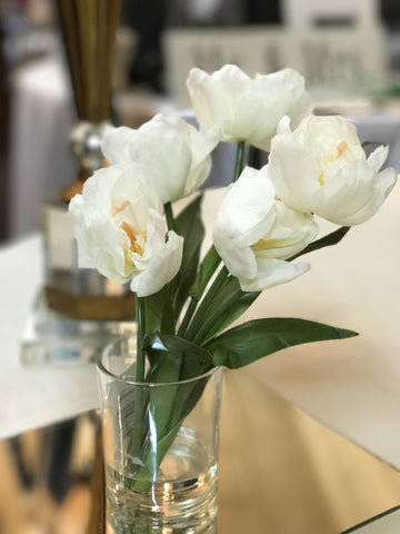 "10"" White Tulips in Glass Cup"