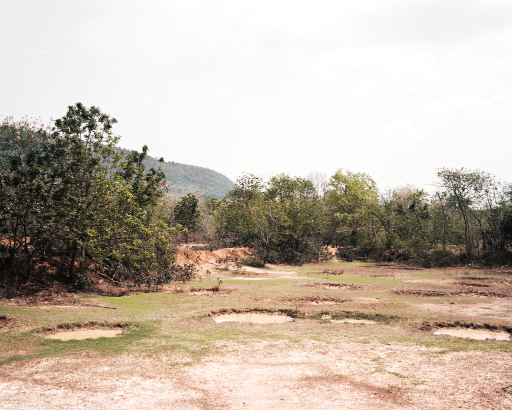 A photograph by artist Sophia Wöhleke of a landscape, it depitct the space where the beach meets the grass and looks inland at several bow bushes. A green mountain rises from the bushes on the left hand side.