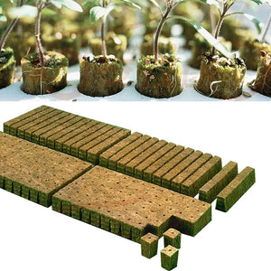 Greenhouse Rockwool Plant Starter Grow Plug Cubes for Hydroponic Applications