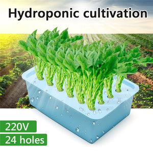 Hydroponic System Kit Indoor Water Planting Grow Box