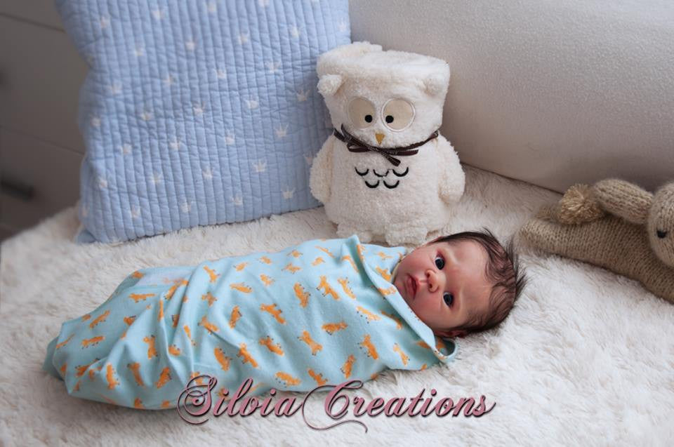 Eric by Adriesdolls (Erin's Twin) - New Photos! - Dolls so Real Inc - 18