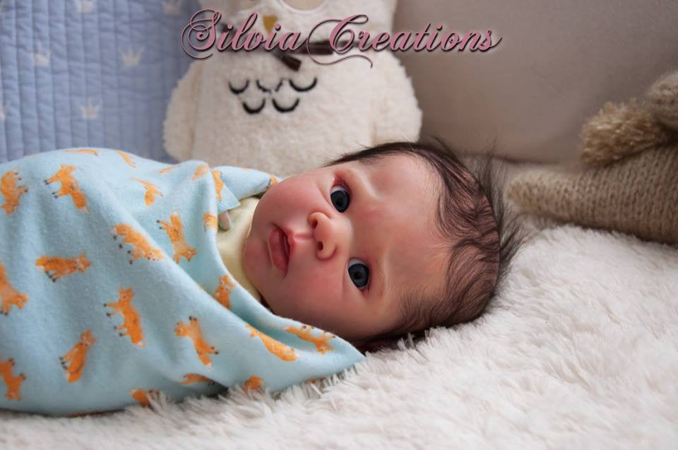 Eric by Adriesdolls (Erin's Twin) - New Photos! - Dolls so Real Inc - 8