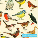 Cocktail Napkins British Birds 6 Pack Set #C439500