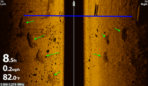 side imaging interpretation