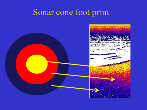 understanding sonar bottom