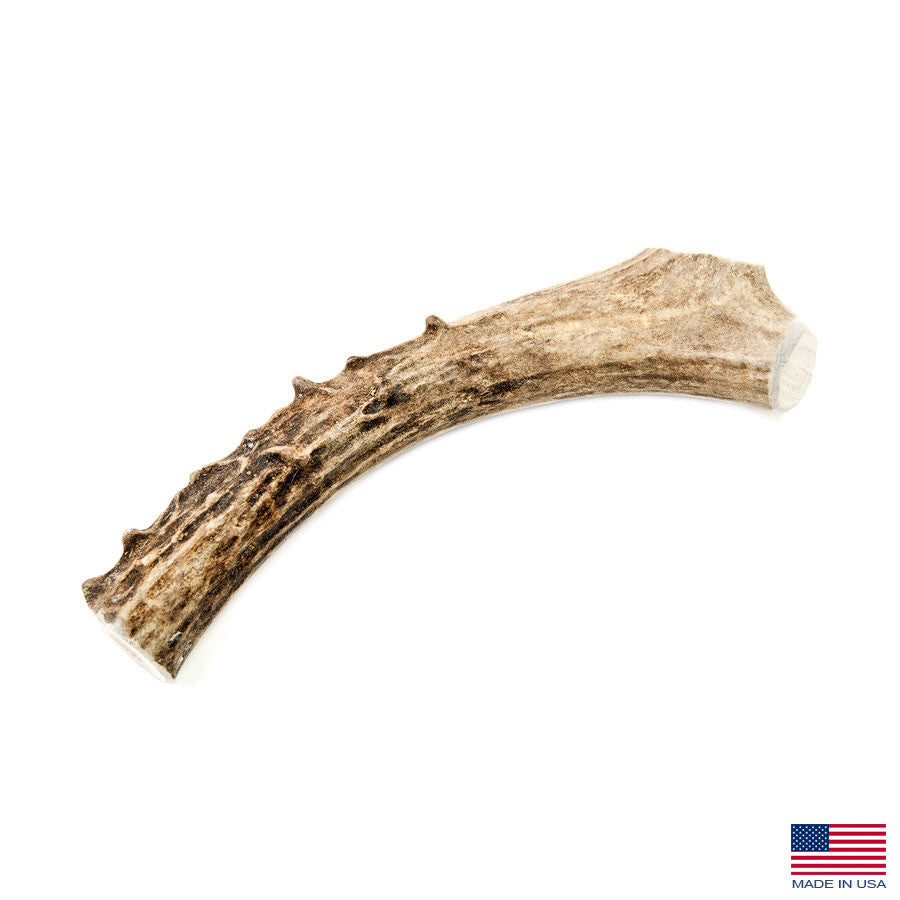 Silver Gate Antlers Large Deer Antler Dog Chew - 5-7 Inches