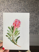 Load image into Gallery viewer, Protea Watercolor (Original)