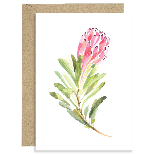 Protea Folded Cards (Set of 3)