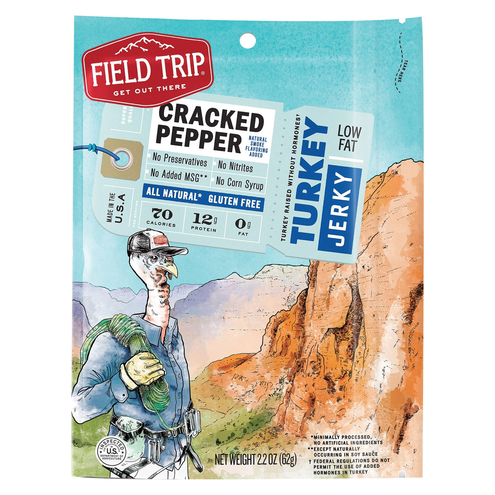 Field Trip Turkey Jerky - Gluten Free - Case of 9 - 2.2 oz.