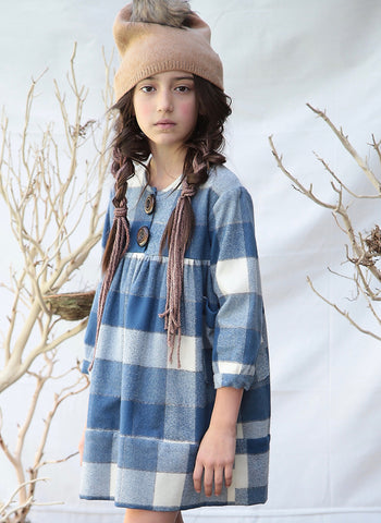 Blue Pony Vintage Hazel Dress in Bigger Blue Check