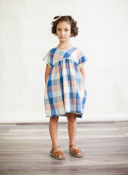 Lali Gooseberry Dress in Blue Chex - FINAL SALE