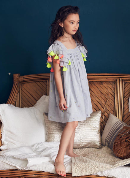Nellystella Chloe Dress in Scatter Embroidery
