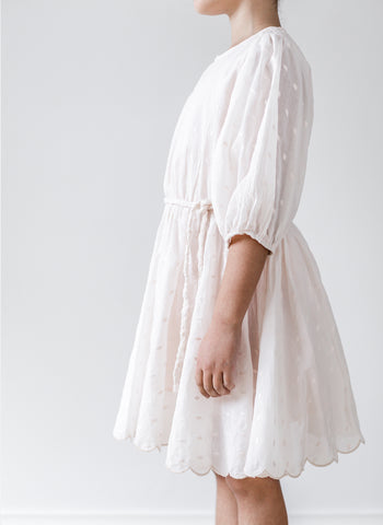 Petite Amalie Embroidered Dot Full Skirt Dress in Petal