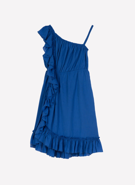 Velveteen Athena One Shoulder Ruffle Dress - FINAL SALE
