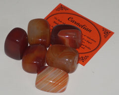 Carnelian Crystal Set of 6 Tumbled Stones Smoothed and Polished - 2x3cm