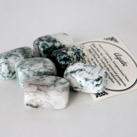 Tree Agate Crystal Set of Tumbled Stones Smoothed and Polished - 2x3cm