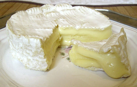 Camembert Cheese Making Course