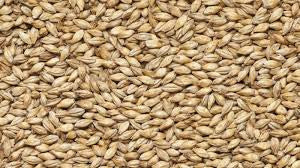 Viking Cara Pale Malt - per 100g