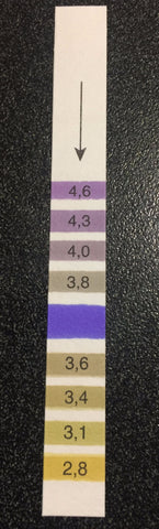PH TEST STRIP - 5 strips in packet