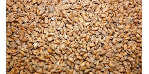 Viking Wheat Malt - 25kg bag