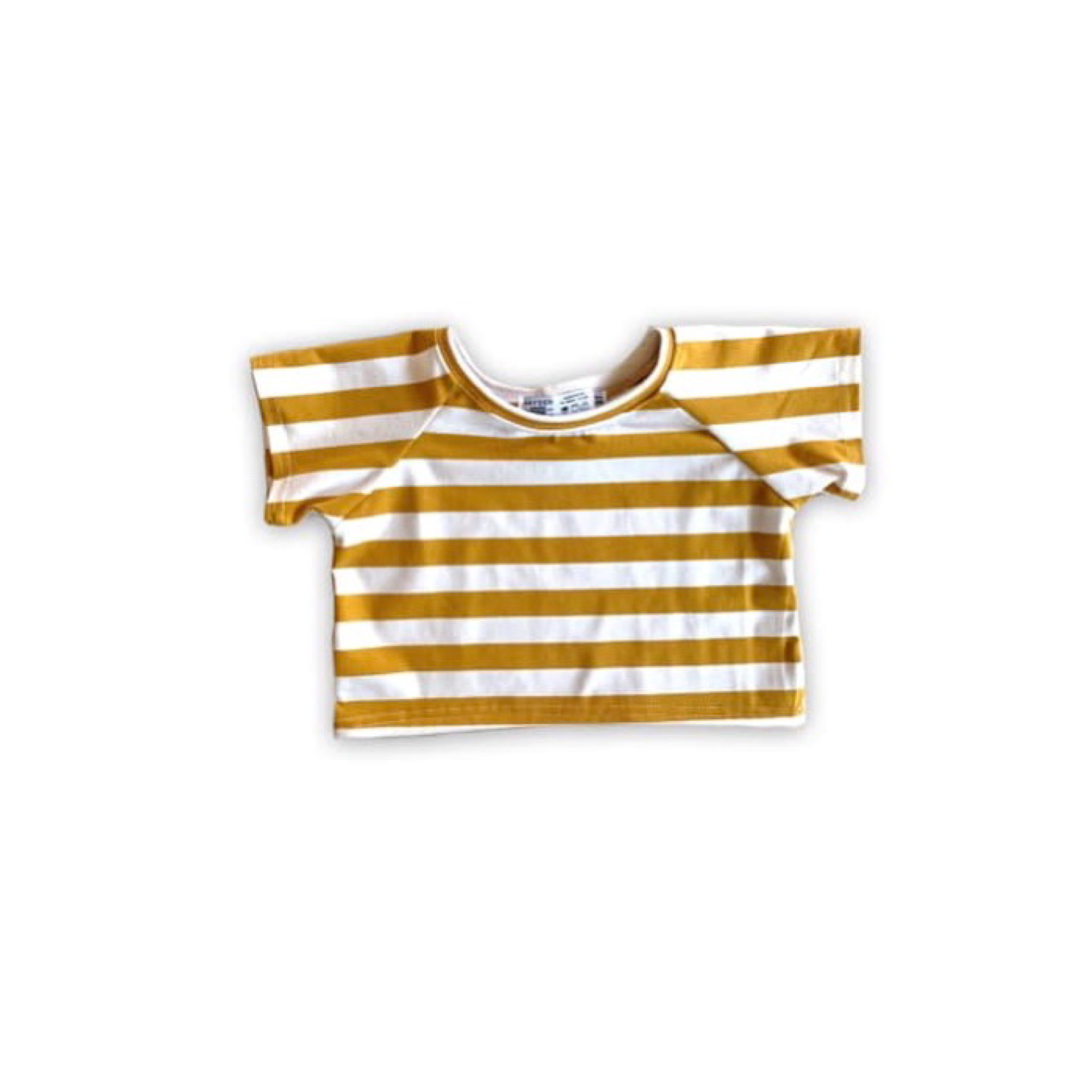 Limited Edition Cropped Tee in Golden Stripe