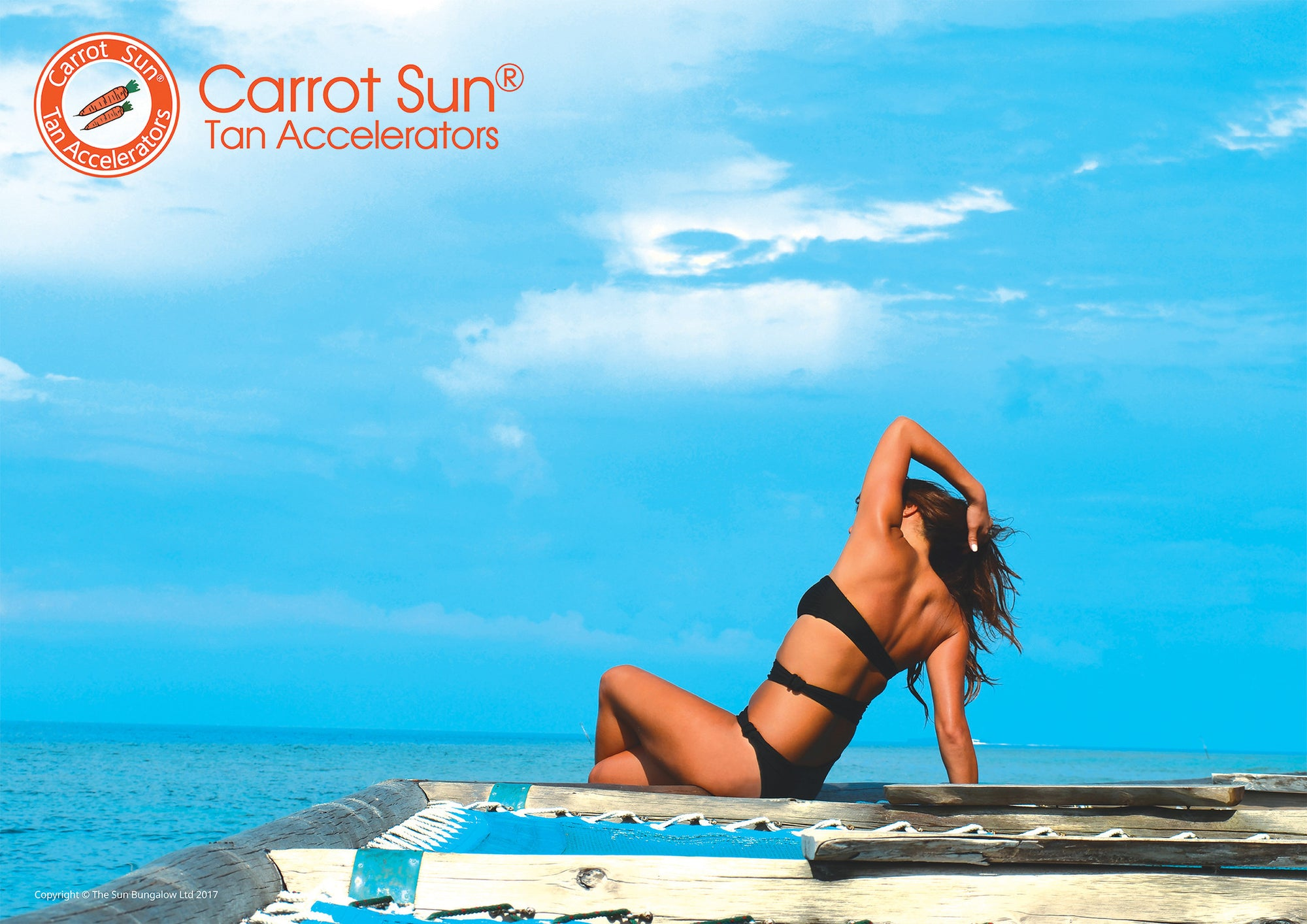 Carrot Sun Free A1 Posters Sky
