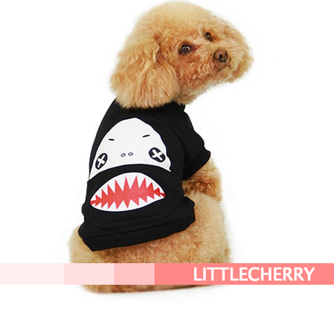 Black Shark - Little Cherry
