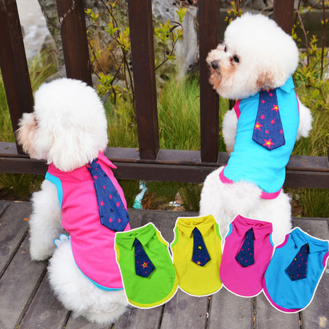 Ramsey Tie Pet Apparel