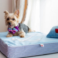 Blue Anchor Fleece Orthopedic Dog Bed - Little Cherry