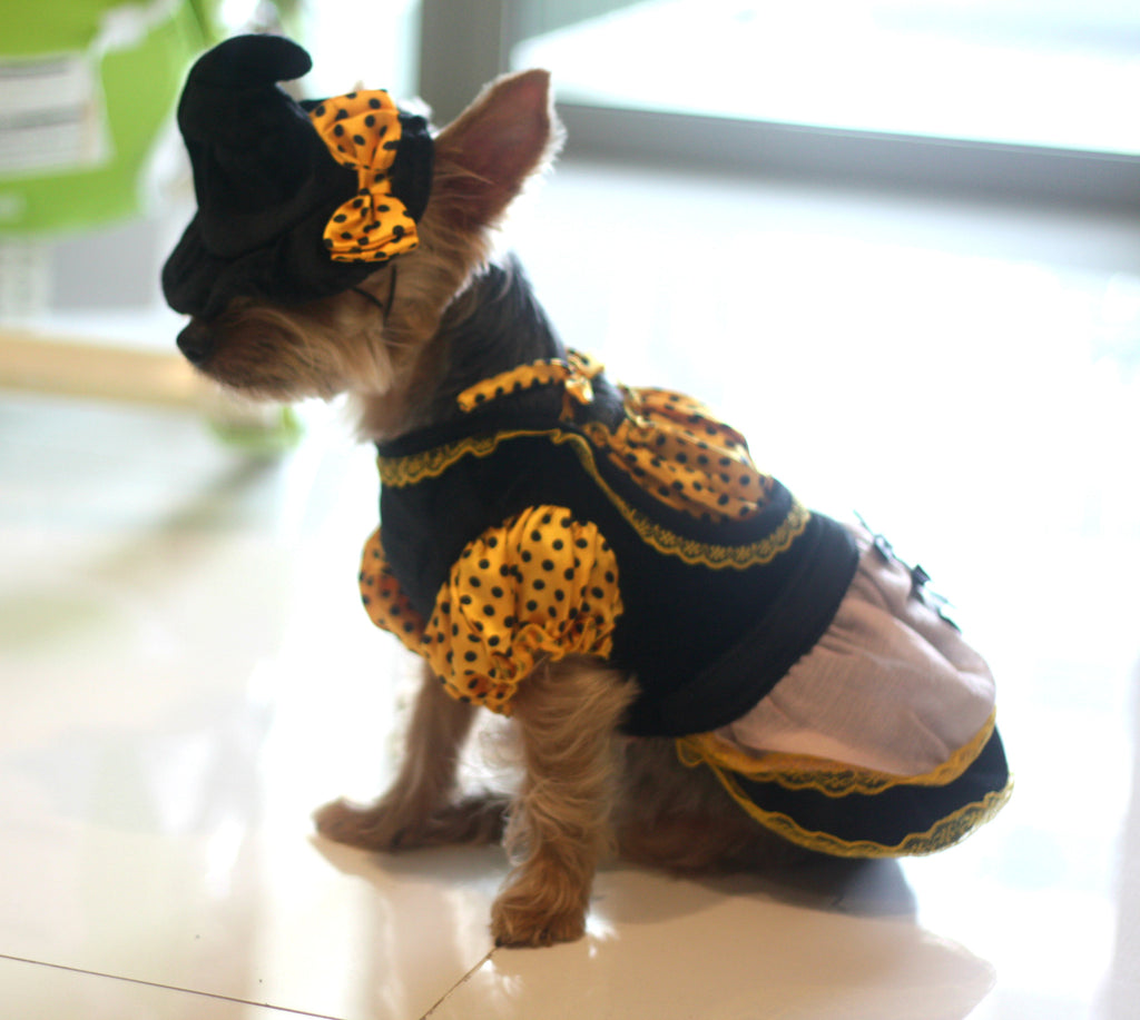Witch Pet Costume - Little Cherry