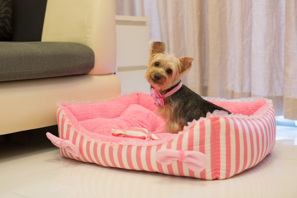 Pink Candy Bed... - Little Cherry