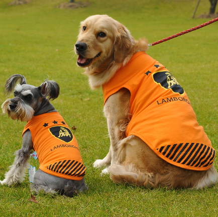 Joshua Tee in Orange (Medium & Large Breeds)