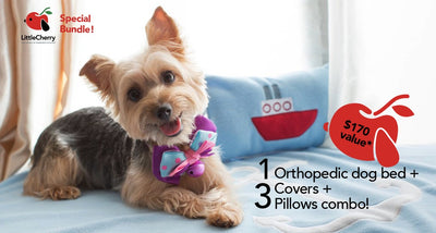 (SPECIAL bundle!) Orthopedic Dog Bed + 3 Covers + 3 Pillows Combo! - Little Cherry