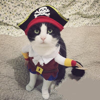 Pirate costume (sizes) - Little Cherry