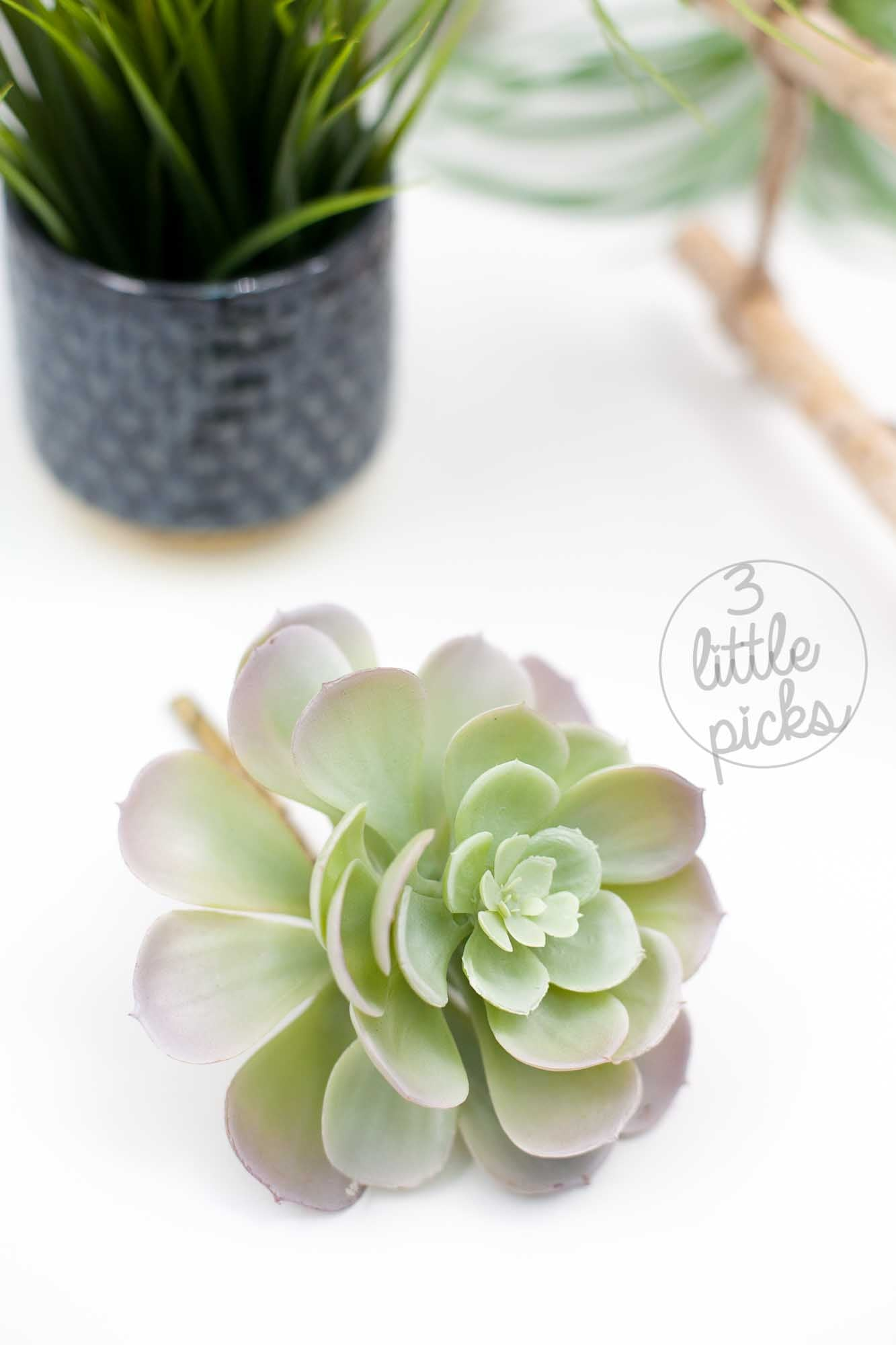 Faux Succulent (Part 2), Decor, 3littlepicks - 3LittlePicks