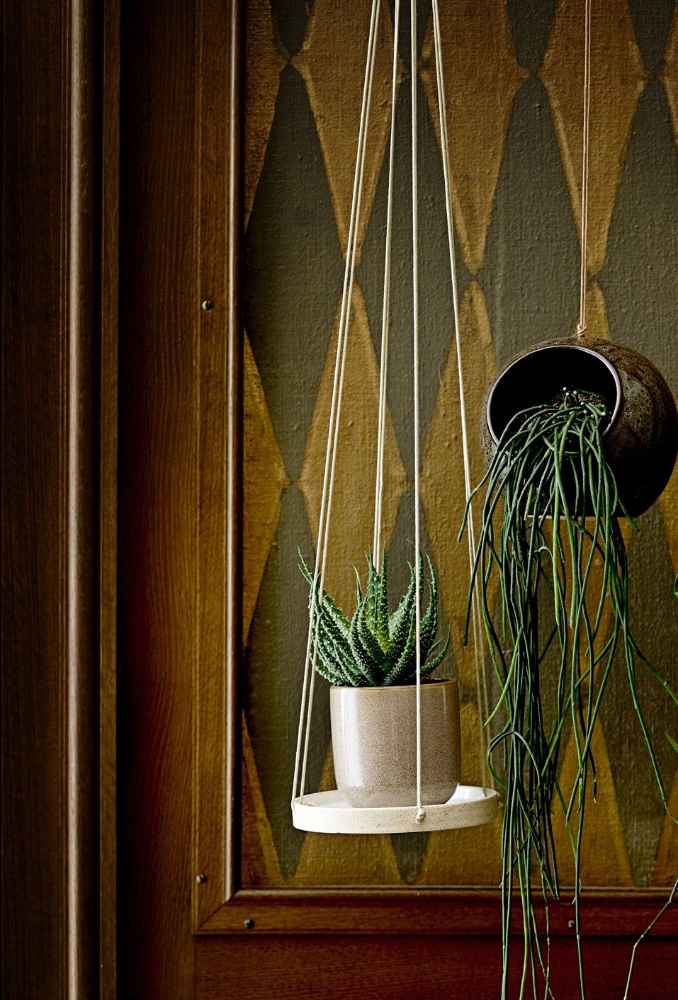 Hanging Plant Tray