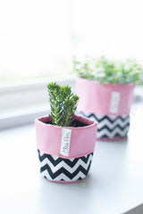Black Zig Zag, Planter, Miss Pots - 3LittlePicks