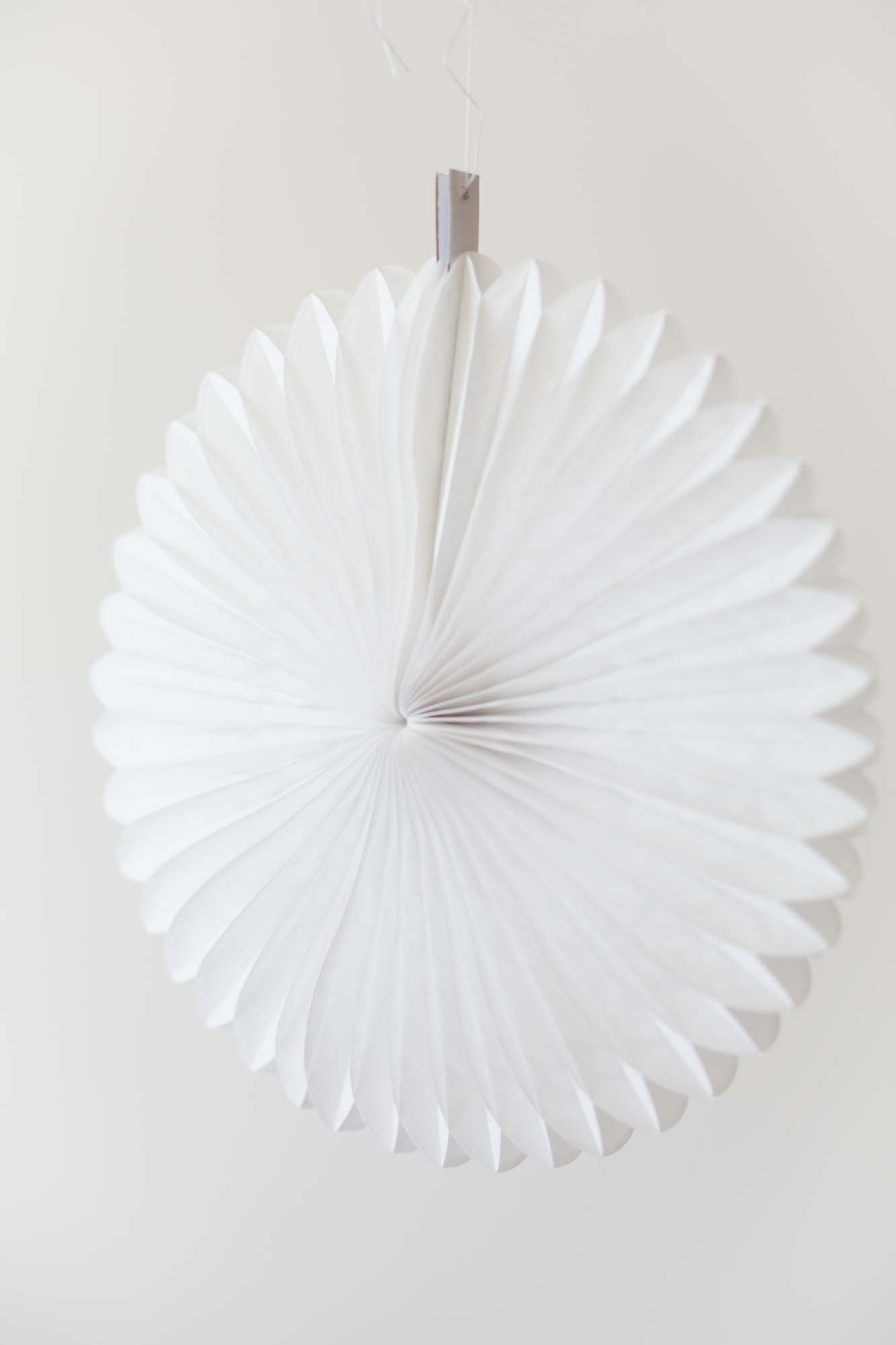 Paper Wheel Fan 30cm, Partyware, 3littlepicks - 3LittlePicks