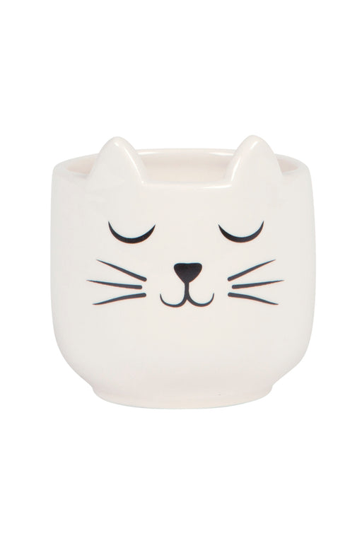 Cat's Whiskers Mini Planter, Planter, Sass & Belle - 3LittlePicks