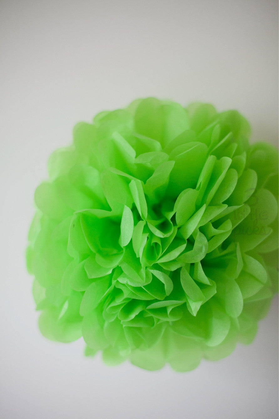 Party Pom Pom (25cm), Partyware, 3littlepicks - 3LittlePicks
