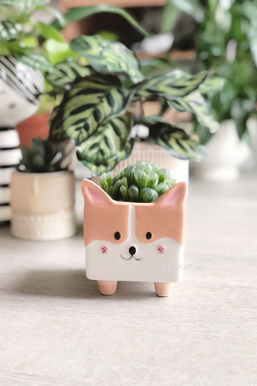 Corgi Mini Planter